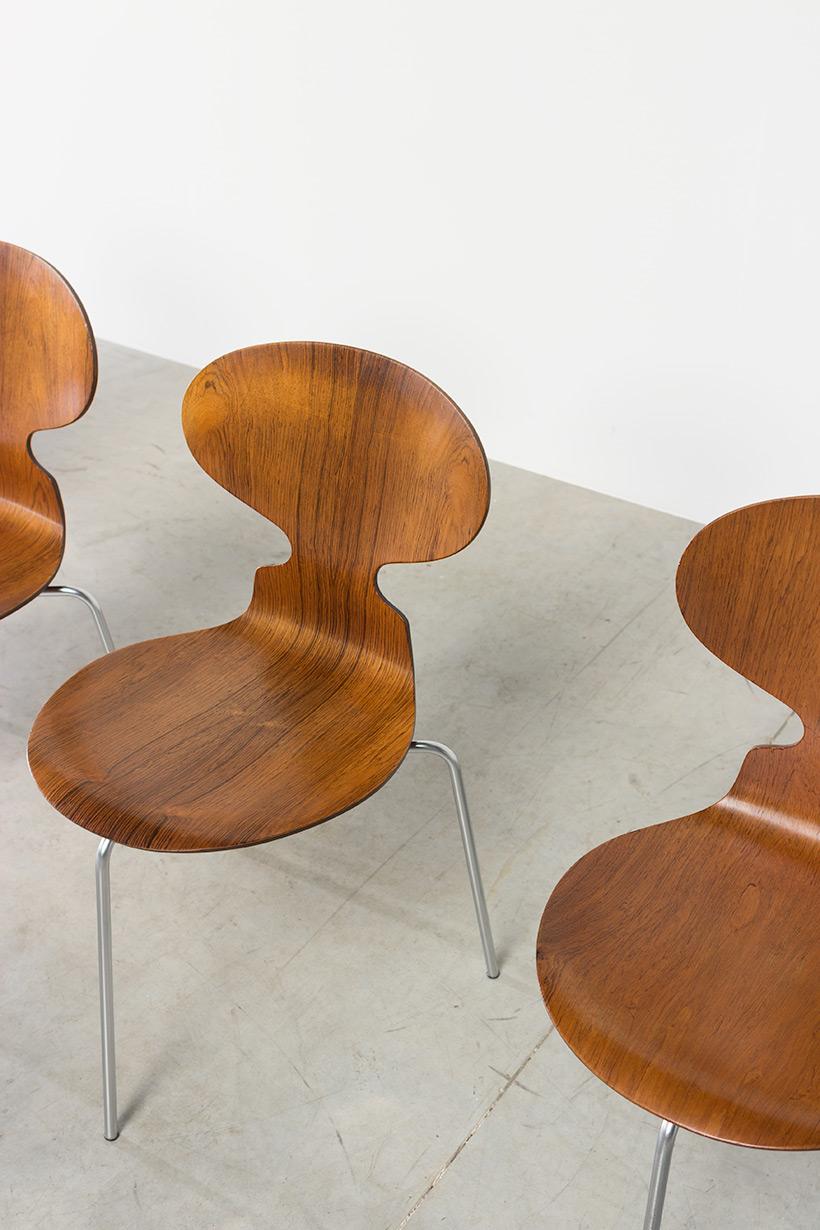Arne Jacobsen set of six Danish Ant chairs in rosewood Fritz Hansen img 6