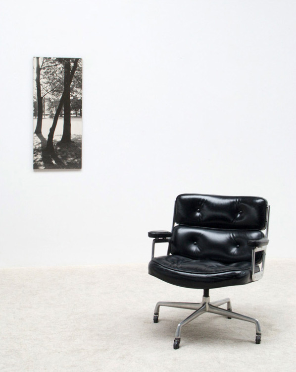 Charles eames time life chair for herman miller furniture - Coussin chaise eames ...