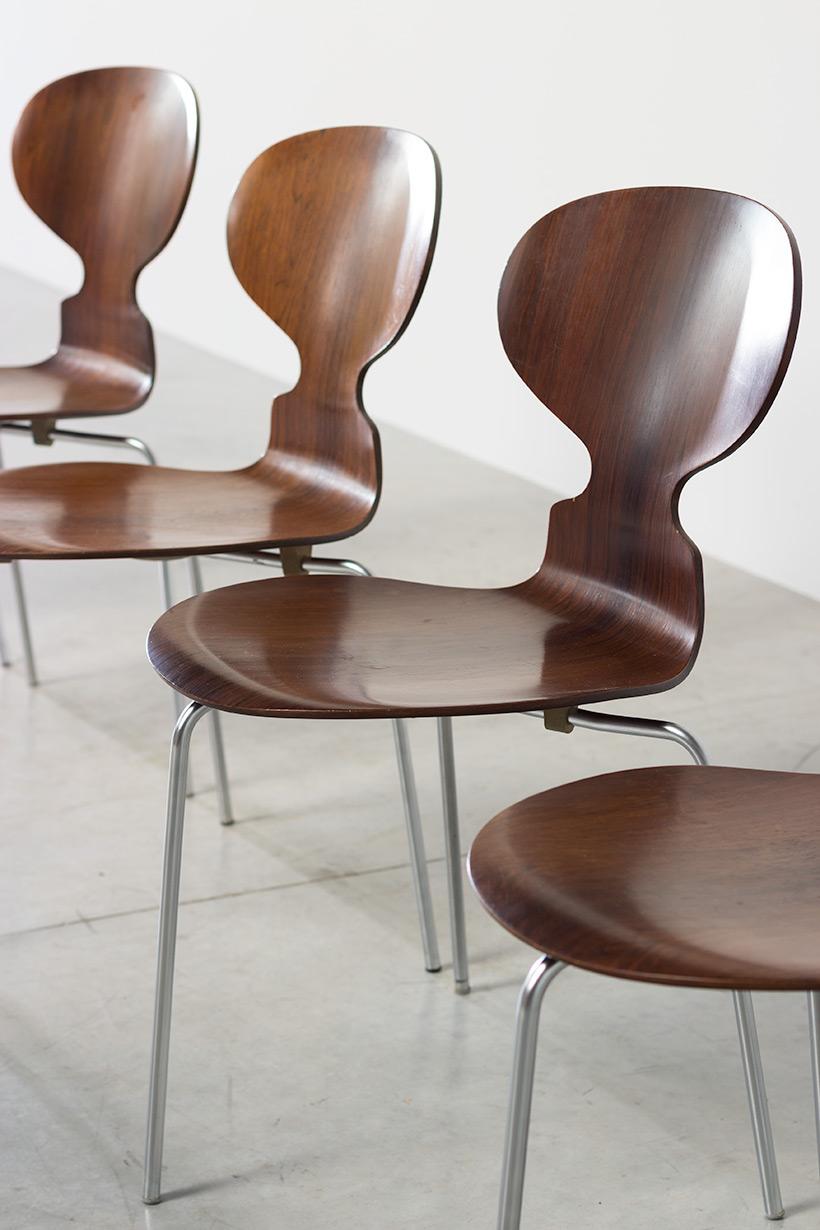 Jacobsen Arne set of five Ant Rosewood chairs Fritz Hansen Denmark